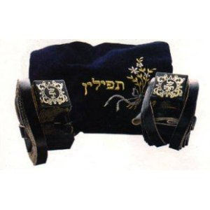 Pair of High Quality Tefillin Phylacteries